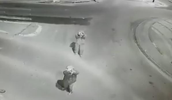 ملثمان يطلقان وابلا من الرصاص على كاميرات مدينة بلا عنف في رهط
