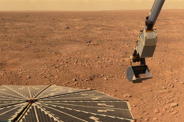 علماء: يمكن زراعة البطاطس على المريخ