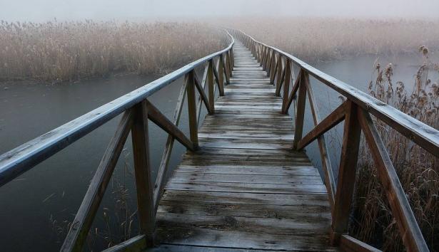 جســـر الـى استــراليا