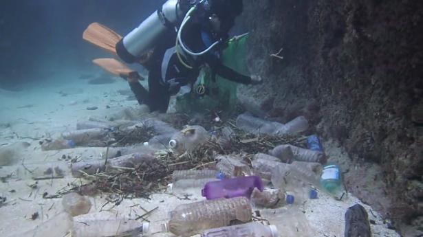 شاهد.. أين تذهب الزجاجات التي نلقيها في البحر