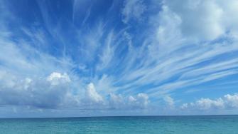 الطقس: انخفاض درجات الحرارة غدًا