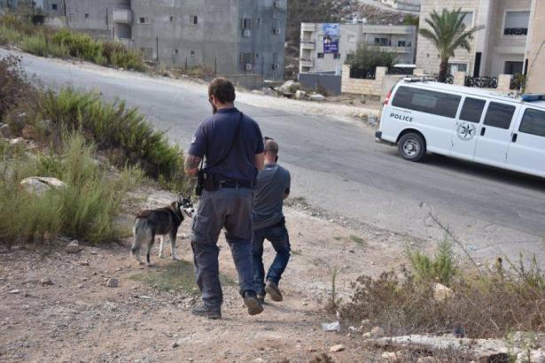 حملة واسعة للشرطة في حي الصفافرة في الناصرة