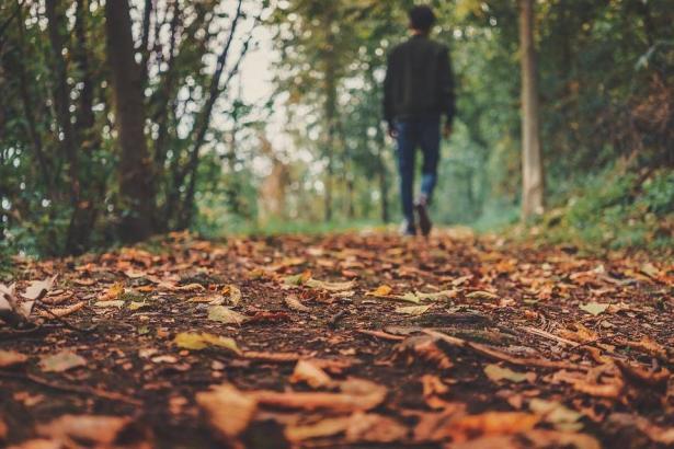 للخريف؛  فوائد صحّية ونفسيّة لا تعلمها