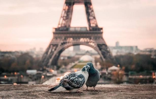 بالصور... هذه هي أكثر مدن العالم ابهاراً للمصورين!