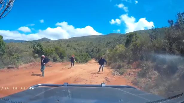 بالفيديو... لحظات مرعبة عاشها زوجان أمريكيان في كينيا