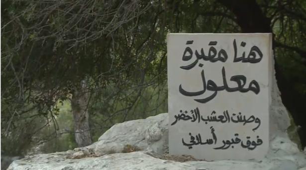 المحامية زهر للشمس: قدمنا التماسًا للعليا للسماح لسيدة بزيارة قبر والدها بمقبرة معلول