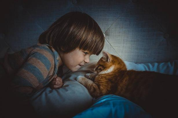 تربية الحيوانات في المنزل.. هل هي مفيدة لأطفالك؟