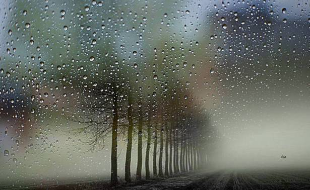 استمرار فرص تساقط الأمطار اليوم وغدا