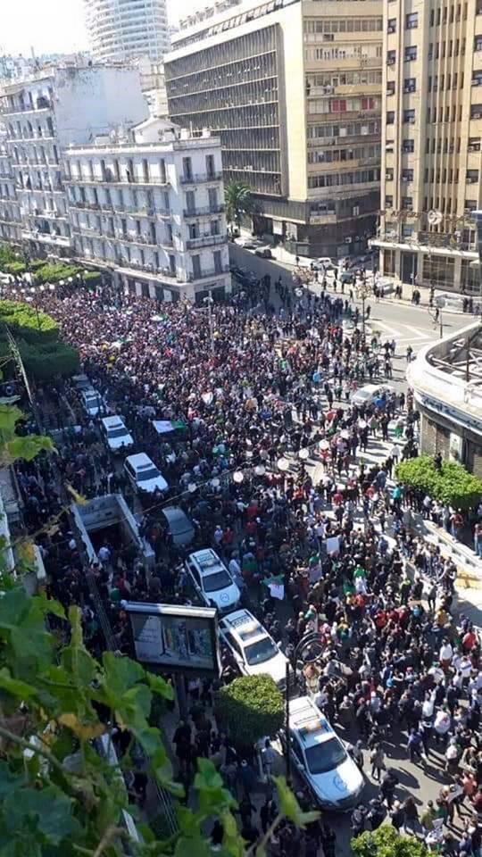 الجزائر تحبس أنفاسها من جديد.. الآلاف يتظاهرون والشرطة تدفع بتعزيزات أمنية إلى محيط قصر الرئاسة