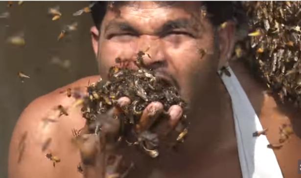شاهد: رجل يأكل آلاف النحلات