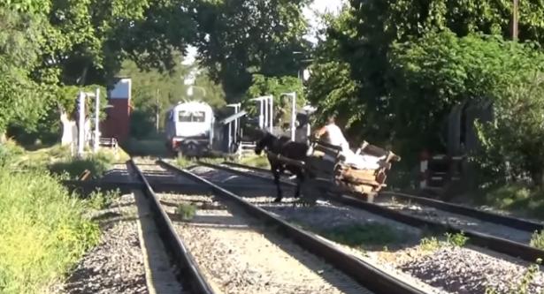 بالفيديو... رجل ينجو بعربته وحصانه من الموت أمام القطار في اللحظة الأخيرة