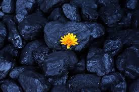 باحثون يسعون لتحويل ثانى أكسيد الكربون إلى فحم