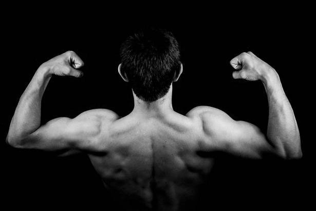 مشروبات بناء العضلات.. دراسة تكشف