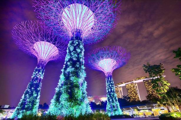 حدائق سنغافورة وجهتك السياحية في الربيع