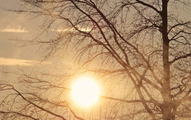 الطقس: ارتفاع ملموس على الحرارة
