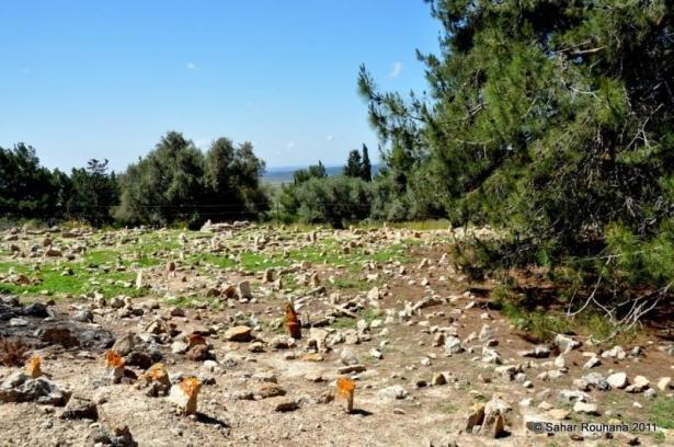 احمد فحماوي من ام الزينات للشمس: مقابر القرى المهجرة تتعرض لاعتداءات متكررة