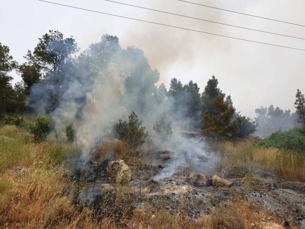 5 طواقم اطفاء تعمل على اخماد حريق عند مدخل بلدة اكسال