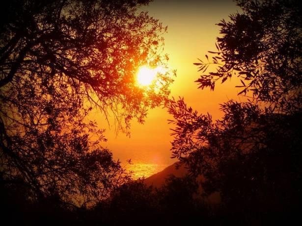 الراصد الجوي للشمس: