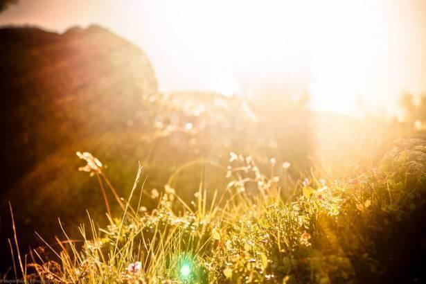 أجواء حارة جدًا وتحذير من التعرض لأشعة الشمس
