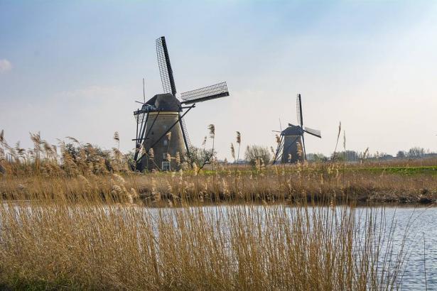 هولندا تبدأ بالعمل بالمسمى الجديد لها