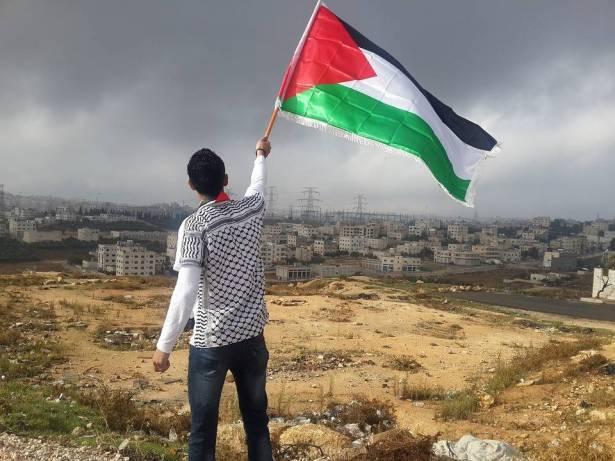 موقف الدول العربية من