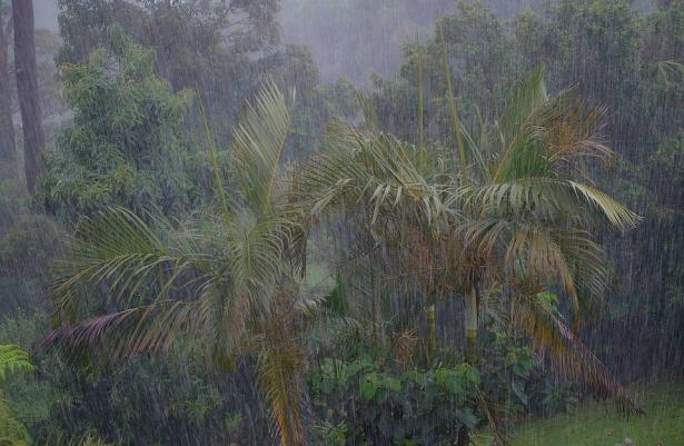الأرصاد: انخفاض الحرارة وتساقط أمطار