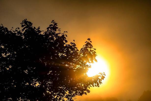 الطقس: ارتفاع طفيف على الحرارة