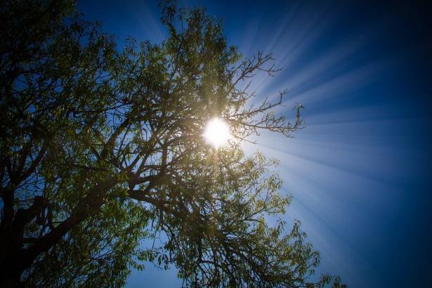 الأرصاد: ارتفاع ملموس على درجات الحرارة