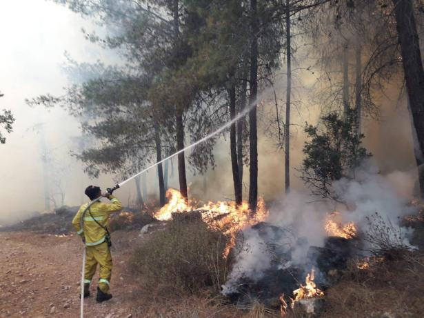 القدس: اندلاع حريق كبير في حرش وطواقم الاطفاء تطالب المواطنين بعدم اشعال النيران