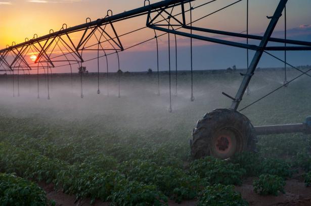 في ظل التوتر بين حماس والجيش الاسرائيلي: منع جميع الأعمال الزراعية في الأراضي المحاذية لقطاع غزّة