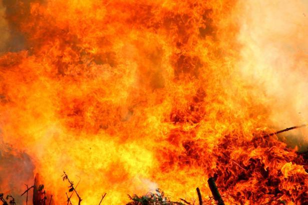النيران تلتهم مناطق حرجية واسعة في سوريا ولبنان