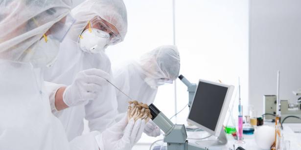 وزارة الصحة: تسجيل 1165 إصابة جديدة بفيروس كورونا منذ انتصاف الليلة الماضية