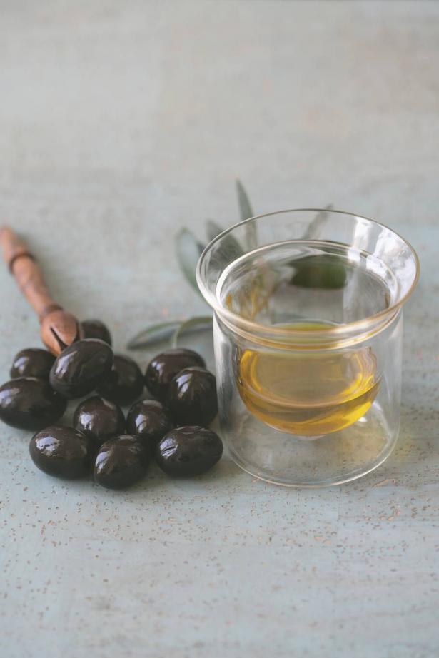 موسم قطف الزيتون: كيف تؤثر التكنولوجيا الحديثة على جودة الزيت؟