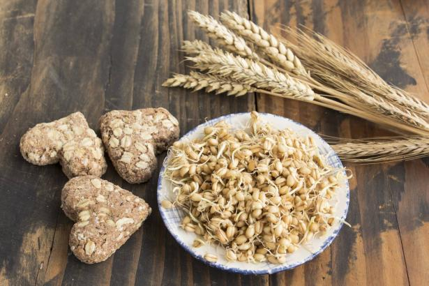 براعم القمح: فوائدها الصحية وطريقة تحضيرها وإستخدامها؟