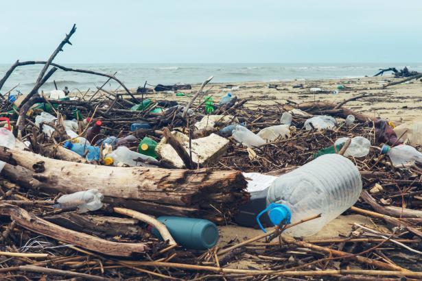 بسبب تلوث الزفت والقطران على شواطئ البلاد: منع تسويق الأسماك والحيوانات البحرية من البحر