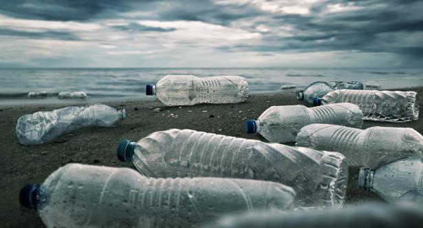 في اليوم العالمي للمستهلك: ما هي خطورة المواد البلاستيكية على النظام البيئي؟