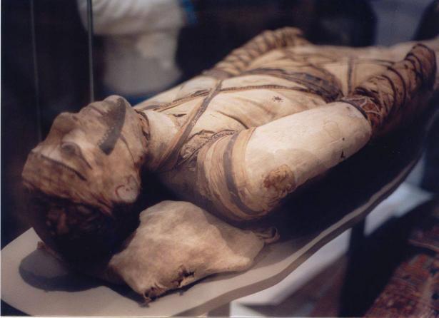 مصر تستعد لنقل إثني عشرة مومياء