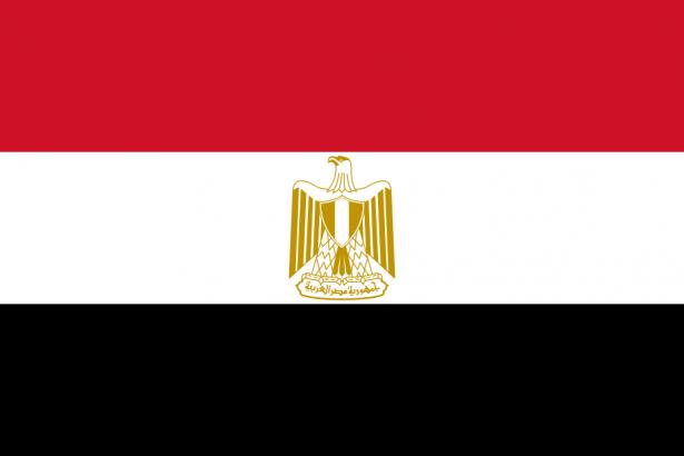 مصر: إجراء إتصالات لعقد مؤتمر لإعادة إعمار غزة