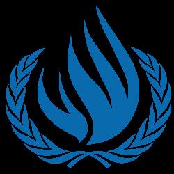 مجلس حقوق الإنسان : تحقيق دولي حول إنتهاكات حقوق الإنسان في الأراضي الفلسطينية