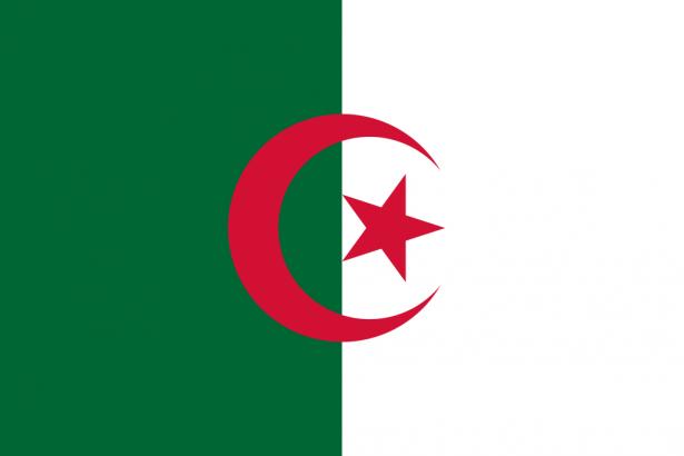 غدًا: 24 مليون ناخب جزائري يدلون بأصواتهم في الانتخابات الأولى بعد بوتفليقة