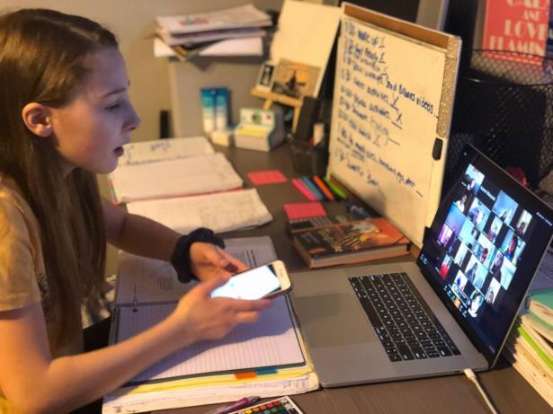 ما هو الفرق بين استفادة الطالب من التعلم الكترونيا ووجاهيا؟