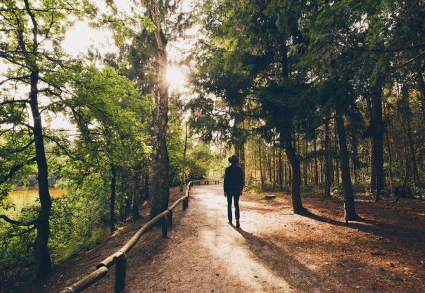 المشي في الطبيعة كيف يصفّي الذهن؟